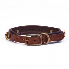 Padded Dog Collar with Bits