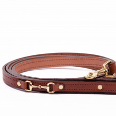 Padded Dog Leash with Bits