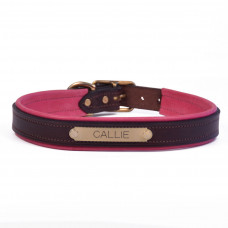 Padded Dog Collar Nameplate
